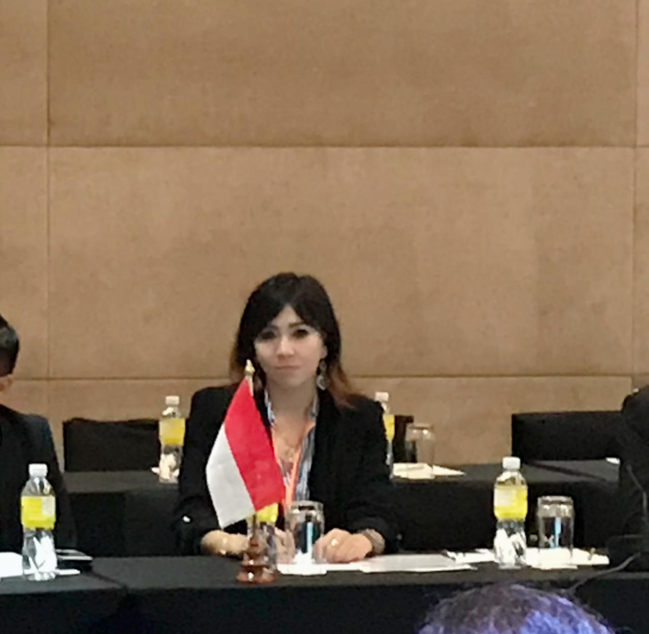 KEMENPORA RI Menghadiri kegiatan Meeting of the 2nd Consultative Group Meeting for the 2nd ASEAN