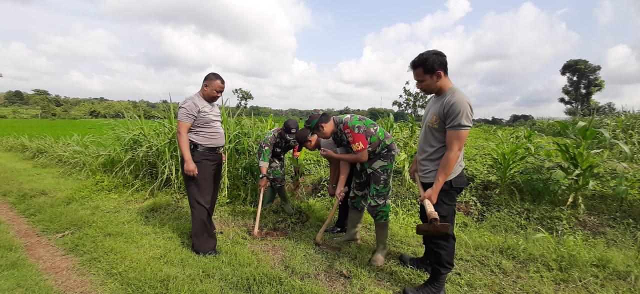 WUJUDKAN KEKOMPAKAN TNI-POLRI TANAM POHON
