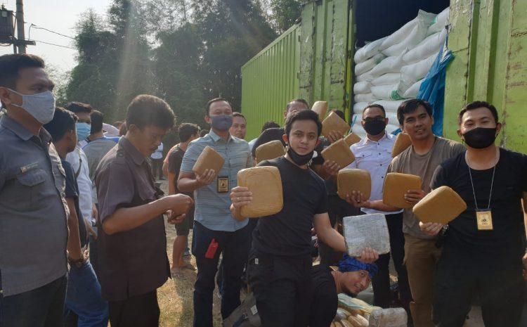 Polda Banten Kembali Gagalkan Penyelundupan 150 Kg Ganja Di Tol Tangerang – Merak