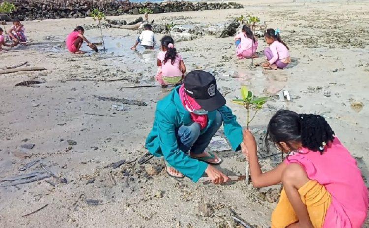 Mahasiswa KKN Universitas Islam Malang Melakukan Penanaman Pohon Mangrove Di Pesisir Pantai Cemara Masalembu