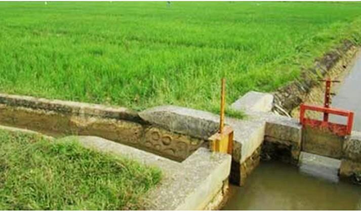 Genjot Pembangunan Irigasi, Mubar Target Daerah Lumbung Padi Di Sultra
